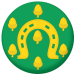 Rutland Flag 58mm Button Badge